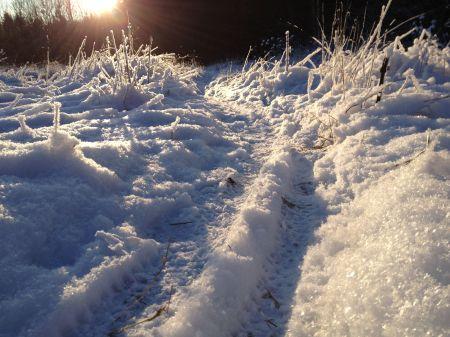 Winter_moment_2014